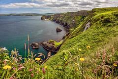 _5D39762 (dendrimermeister) Tags: ireland cliff seascape rock outdoors coast seaside shore antrim kinbane