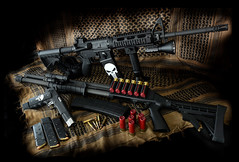 Team Punisher (viper10802) Tags: stag gun rifle pistol shotgun ar15 1911 punisher 223 mossberg 12gauge compensator springfieldarmory a1loaded