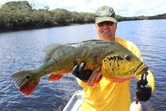 Amazonia 2012 (69)