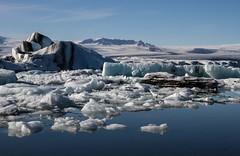 Amas d'icebergs au Jökulsarlon (mass of Icebergs) (Larch) Tags: blue ice nature water iceland eau glacier bleu iceberg glace islande jökulsarlon áíslandi