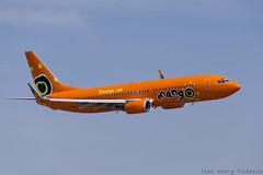 Mango B737 800 (2) (Indavar) Tags: plane airplane airshow chipmunk mustang albatros rand beech at6 radial an2 p51 l39 antonov dc4 dhc1 beech18 t28trojan b378