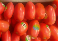 (Cliff Michaels) Tags: tomato tennessee produce kroger iphone maryville photosho iphone6 pse9
