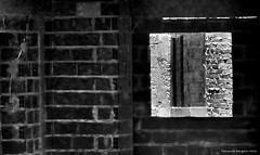 hacia el cemento (ojoadicto) Tags: blackandwhite blancoynegro window ventana bricks cemento ladrillos pard