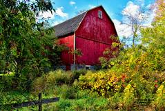 BEHIND THE BARN (Aspenbreeze) Tags: autumn fall nature wisconsin barn rural countryside seasons farm country barns farmland redbarn oldbarn wisconsinlandscape aspenbreeze moonandbackphotography bevzuerlein