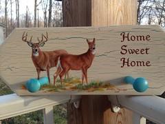 "Whitetail Buck and Doe by sherrylpaintz (sherrylpaintz) Tags: original nature painting design acrylic turquoise ooak decorative painted wildlife country doe deer buck crackle whitetail realism realistic art"" ""one artist"" painting"" ""wall ""wildlife ""folk rack"" kind"" ""acrylic sherrylpaintz"