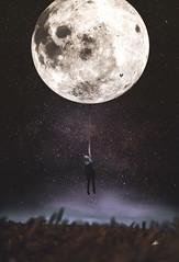 The Moon catcher (veldreannija) Tags: summer sky moon selfportrait field night stars nikon magic fineart grain catcher fineartphotography nikond5300