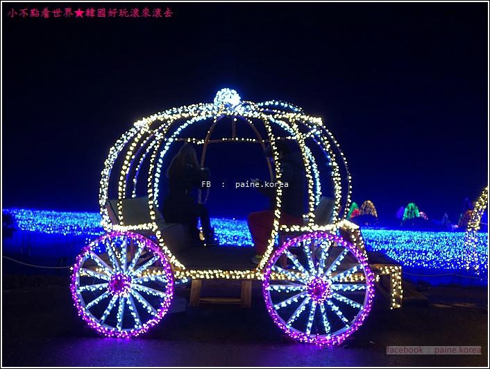 晨靜樹木園 五色星光庭園展 (22).JPG