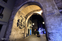 Porta Altinate, Mura Comunali, Padova (Davide Anselmi) Tags: alvisepisani monumento mura muracomunali notte padova porta portaaltinate davideanselmi 2016