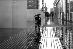 The kiss (pascalcolin1) Tags: paris13 bnf baiser kiss kissing amoureux lovers pluie rain reflets reflection parapluie umbrella couple photoderue streetview urbanarte noiretblanc blackandwhite photopascalcolin