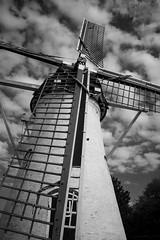windmill (in Explore) (GitteCraemers) Tags: black white windmill nature explore