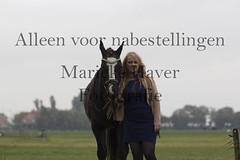 15 oktober 2016-74 (MZorro4) Tags: mariekehaverfotografie oudesluis schagen paardenfotografie portretfotos rijden wwwmariekehaverfotografienlpaarden
