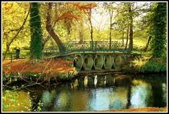Petit pont du parc du Moulineau (Les photos de LN) Tags: automne nature pont parcdumoulineau gradignan bordeaux feuillages teinteschaudes couleurs promenade balade beaut calme eaubourde rivire coursdeau