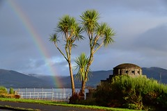 (Zak355) Tags: rothesay isleofbute bute scotland scottish rainbow palmtree weather