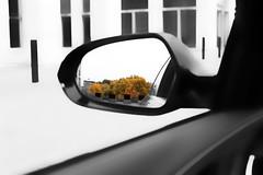 autumn (Landesfahrer) Tags: herbst wuppertal kunst baum laub auto spiegel gebude