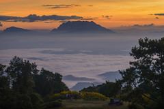 Sun Rise at Huai Nam Dang National Park (noomplayboy) Tags:  nationalpark   thailand thai forest fog beautiful glacier sky sunset sunrise mountain landscape cloud cloudy sun asia view noomplayboy nanutbovorn outdoor