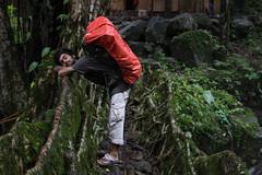 Living root bridges (Neeraj_ratnu) Tags: meghalaya northeast root nongriat people cheerapunji livingrootbridges northeastindia incredibleindia