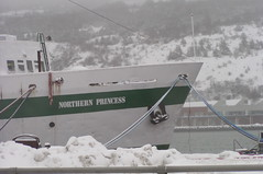 St. John's, MS Northern Princess (Joseph Topping) Tags: newfoundland canada winter
