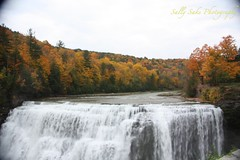 IMG_9594 (Sally Knox Sakshaug) Tags: letchworth state park new york fall autumn october colors leaf leaves orange yellow stone grey gray brown green red beautiful pretty scenic gorge ravine cliff wall edge side river water valley deep crevice waterfall white spectacular falls beauty middle large major mighty strong powerful impressive awe inspiring genesee portagecanyon