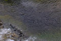 Summer river 2/2 (Jukka Kaurala) Tags: fujifilm fuji xseries xt1 fujinon xf1655mmf28rlmwr norway midnightsun
