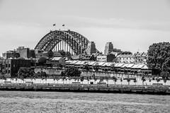 The Rocks & Harbour Bridge (Andrés Guerrero) Tags: australia nsw nuevagalesdelsur oceanía sydney therocks oceania harbourbridge puente bridge monochrome monocromo monocromático monochromatic blancoynegro blackandwhite blackwhite