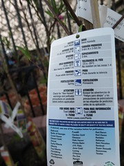 IMG_1406 (pbinder) Tags: 2016 201603 20160322 march mar tuesday tue kansas city missouri kansascity kansascitymissouri kc mo kcmo lowes plants