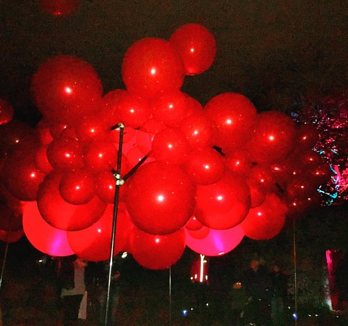 Many more than 99 Red Balloons #LightupLancaster tonight and tomorrow (4&5 Nov) in #Lancaster city centre 😀'When the Red Rose' by Steve Messam🎈🎈🎈