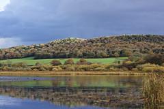 Autumn Colours (phenr1) Tags: silverdale leightonmoss landscape