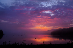Sunrise 11/3/2016 (snooker2009) Tags: sunrise lake reflection nature pennsylvania bright colorful clouds pond river water