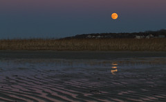 Super Moon over the Salt Marsh (brucetopher) Tags: supermoon super moon beaver beavermoon fullmoon full moonrise water reflection reflect sky beach sea marsh saltmarsh pink blue orange yellow headland seagrass grass beauty peace peacefull sunset rise