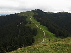 Hinteres Hrnle und Stierkopf (aniko e) Tags: hintereshrnle stierkopf hiking paths ways trails forest autumn ammergaueralpen badkohlgrub unterammergau