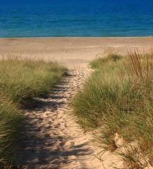 Path through the Dune Grass at Kemil Beach - Indiana Dunes State Park, Northwest Indiana (danjdavis) Tags: indianadunesstatepark indianastatepark statepark kemilbeach dunegrass sand path brach lakemichigan indiana