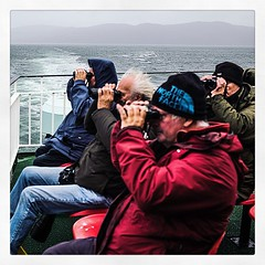 IMG_3916 (Bruno Meyer Photography) Tags: isleofmull scotland visitscotland ferry people sea travel roadtrip watchers friends photography leica leicaimages leicacamera leicam240 leicacamerafrance raw edit square