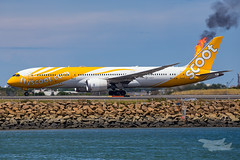 9V-OJA TZ B789 34L YSSY-5331 (A u s s i e P o m m) Tags: mascot newsouthwales australia au scoot flyscoot tz boeing b789