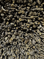 Wood Pile (cowyeow) Tags: shennongjiaforestrydistrict composition asia asian china chinese farm farming shennongjia wood sticks pile firewood texture hubei
