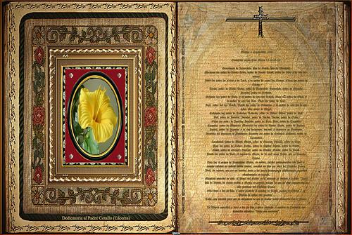 Evangelio 8 Septiembre 2015 (Dedicado  al P.Cotallo)