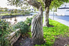 SALMON WEIR AREA GALWAY [RIVER CORRIB] REF--107559