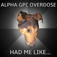 Alpha GPC meme (dylan.unknown5150) Tags: me high like meme health drugs insanity had af euphoria pills alpha chemicals confusion medication illness tripping mental supplement hallucinations gpc dietary