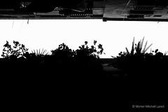 Barcelona-2015-04-25_11-17-50.jpg (Morten Mitchell Lard) Tags: barcelona street city urban bw monochrome 35mm blackwhite fuji candid citylife fujifilm streetphoto nocrop ux streetphography schibsted 500px niksilverefex x100t