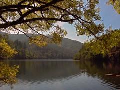 Ribeira Sacra (carlinhos75) Tags: naturaleza nature ro nikon natureza lugo mio ribeirasacra p5000