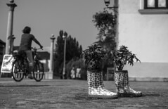 (jenycool) Tags: camera summer blackandwhite bw plants streetart cute photography cool boots outdoor hipster streetphotography olympus slovenia ljubljana omdem5