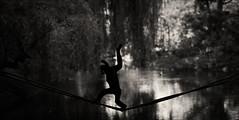 Crazy gibbon (Radoslaw Betlejewski) Tags: street city portrait white black art water animal animals photography zoo monkey nikon wildlife reporter poland polska tropical warsaw journalism warszawa 135mm gibbon samyang