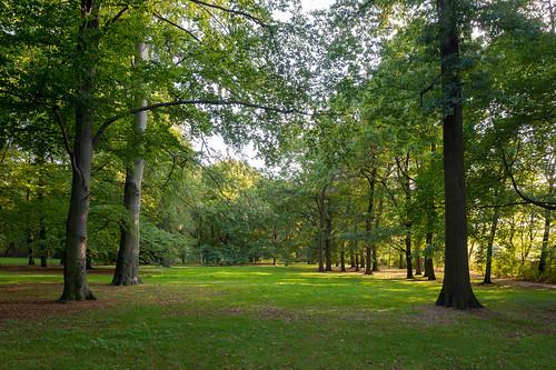 MH_Schlosspark_Biesdorf_FotoOleBader-0791