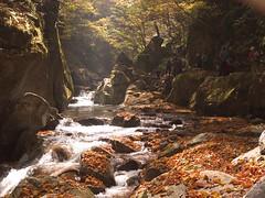 Nishizawa ravine (elminium) Tags: people mountain water japan forest stream trail ravine yamanashi coloredleaves dmcg1