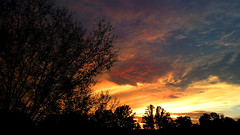 sunset081020154 (Shane Clements) Tags: sunset sky nature clouds outdoors treesilhouette evening colorful settingsun mindful