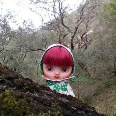 PLOPP! ASOMÓ!   #Middieblythe #fungilandiacustom #middieblythecustom #blythecustom #blythe #forest