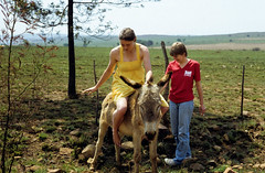 197? nikki vicky 03 (francois f swanepoel) Tags: canon nikki donkey canona1 vicky slidescans