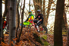 (Photos by Paulina) Tags: sun bike forest downhill biker bikers flowriders