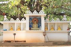 AJY_2972 (arika.otomamay) Tags: srilanka trincomalee gokana gokanna