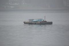 DSC_0869 (Six Sigma Man (Thank you for the 1.9M+ views)) Tags: fog nikon longisland nikond3200 coldspringharbor