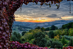 Subtle Shades of a Tuscan Morning... (LouisAnnImage - The Photography of Howard Brown) Tags: morning autumn fall dawn vines san volterra ivy vine lorenzo tuscany hdr agriturismo podere cloudsstormssunsetssunrises